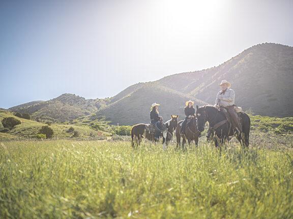Horseback Riding Big Sandy Visit Pinedale