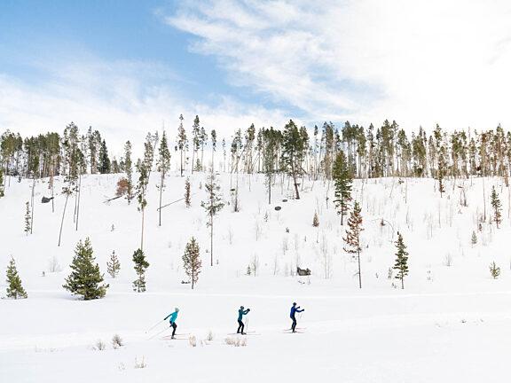 Nordic Skiing Kelly Park Visit Pinedale