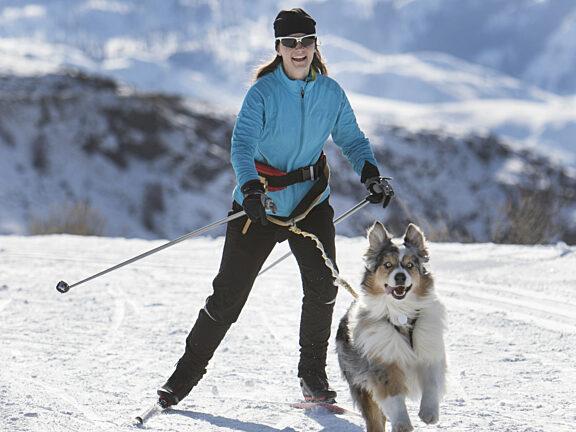 Skijoring Visit Pinedale