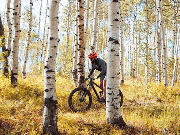 Fall Mountain Biking White Pine - Visit Pinedale, WY -